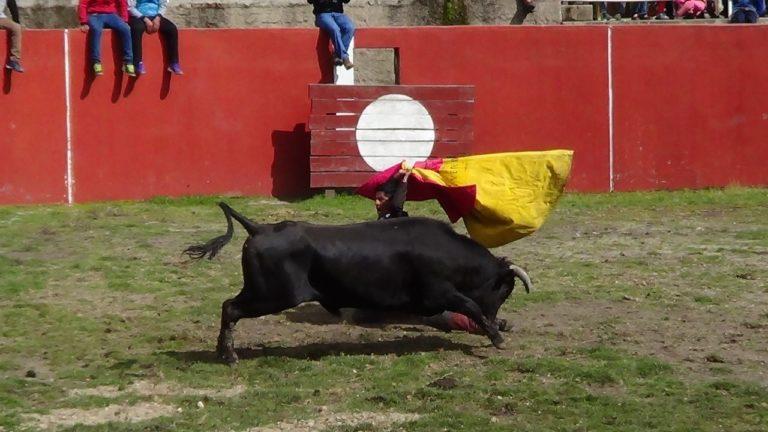 Eventos Culturales - Corrida de Toros